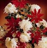 صورة باقة زهور