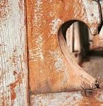 صورة قلب بني