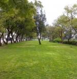 Abha walker road