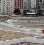 Abi Taleb cemetery