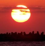 Alexandria Coast – SunSet