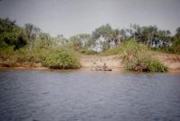 Bentota river near Beach Hotel