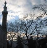 الحديقة بمسجد غرين