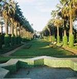 حديقة الجامعة العربية وحديقة ياسمينة