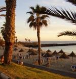 شاطئ الكنارى