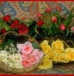 صورة ازهار التوليب والقرنفل