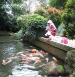 حديقة دينو فى فوكيت