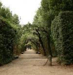 حديقة بوبولي