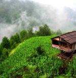 صورة الطبيعة في تركيا