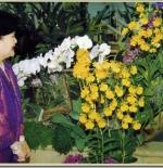 حديقه الزهور الملكي
