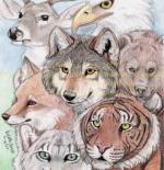 صورة الحيوانات