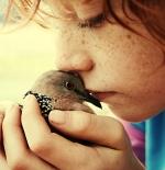 صورة طفل وحمامة