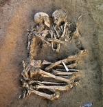 صورة الهيكل العظمي