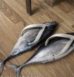 صورة حذاء من السمك