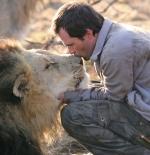 صورة الرجل وقبلة الاسد