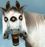صورة الحصان والوجوة المختلفة