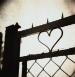 صورة قلوب زخارف
