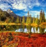 صورة طبيعة جميلة