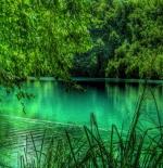 صورة الطبيعة الجميلة جدا