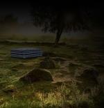 صورة الطبيعة الهادئة