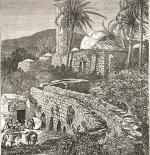 صورة قديمة لفلسطين