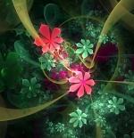صورة دوامه الزهور