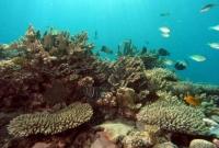 اعماق البحر في جزر القمر