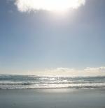 شواطئ كيب تاون