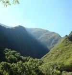 الطبيعة في جزيرة هاواي