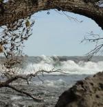 جزيرة نياغارا
