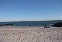 الشاطئ في نيويورك