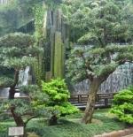 حدائق في هونج كونج