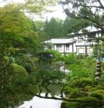 صورة حديقة يابانية
