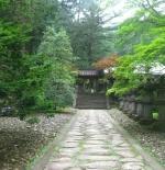 صورة غابات وحدائق في طوكيو