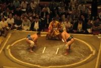 صورة مصارعة السومو في طوكيو