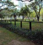 a park on the way to the mall