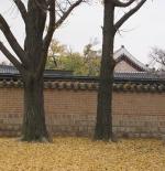 Autumn at Gyeongbokgung