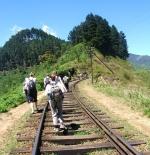 تلة رحلة خط قطار