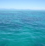 The Awsome Great Barrier Reef