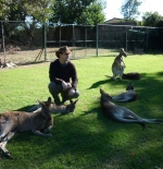 Kangaroo Reserve