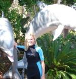 Dolphin Encounter-Sea World