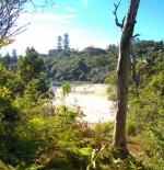 شاطئ كولينز