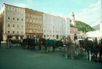 Horses await tourists in SAlzburg