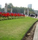 gardens around buckingham palace