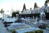 مقابر في مدينة نيس