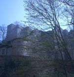 Baden-Baden castle ruin