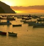 قوارب على شواطئ جزر الكنارى