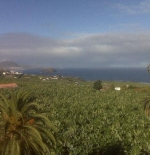 The North coast of Tenerife