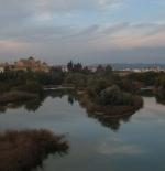 نهر قرطبة