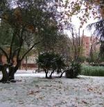 الثلوج في مدريد